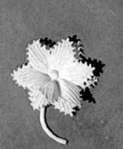 Lapel Flower Pattern #2634 Crochet Patterns