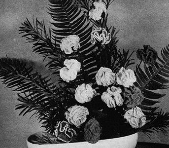 Carnations Pattern #4510