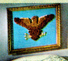 Eagle Picture Pattern